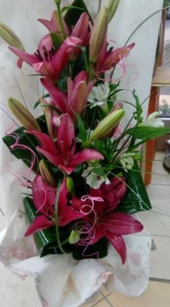 Cvećara Maki M