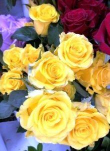 Rezano cveće