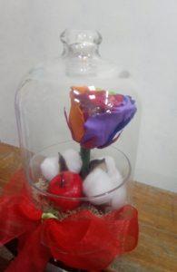 Dehidrirane ruže 1