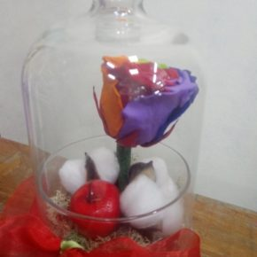 Dehidrirane ruže
